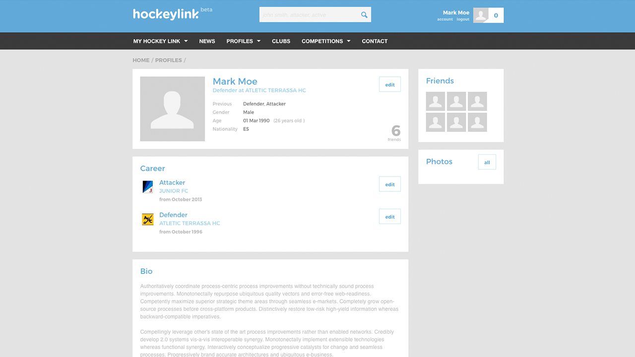 Hockeylink profile view screenshot with the career, skills and biography